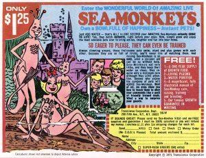 seamonkeycomicbook